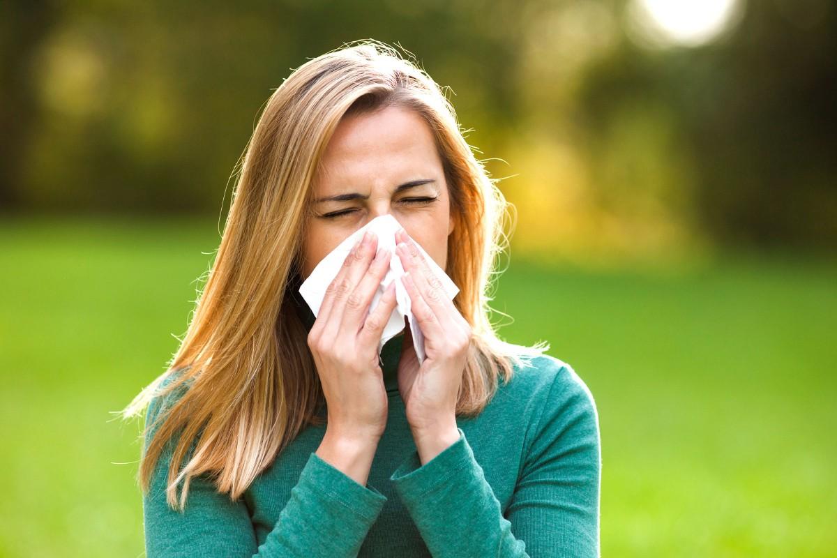 Las Alergias. Parte II